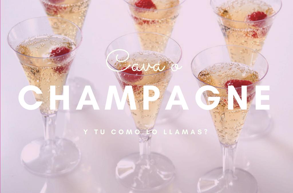 Descubre las diferencias entre cava y champagne
